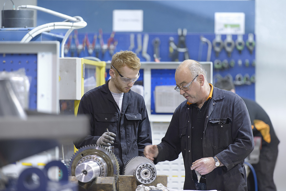 High-performance apprenticeships & work-based learning: 20 guiding principles